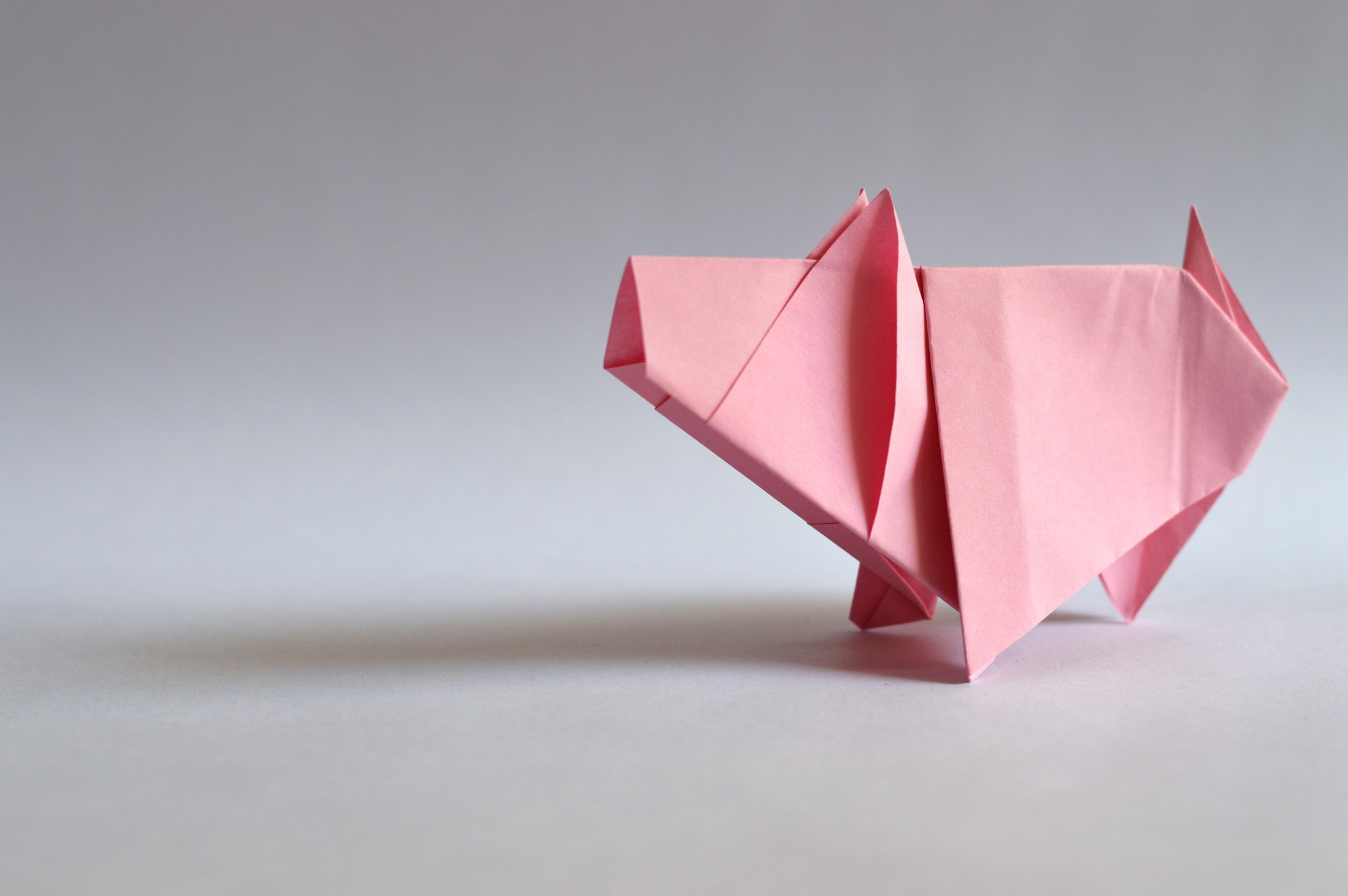 Djeco Easy Origami FAMILY - TakaTomo.de | 2723x4096